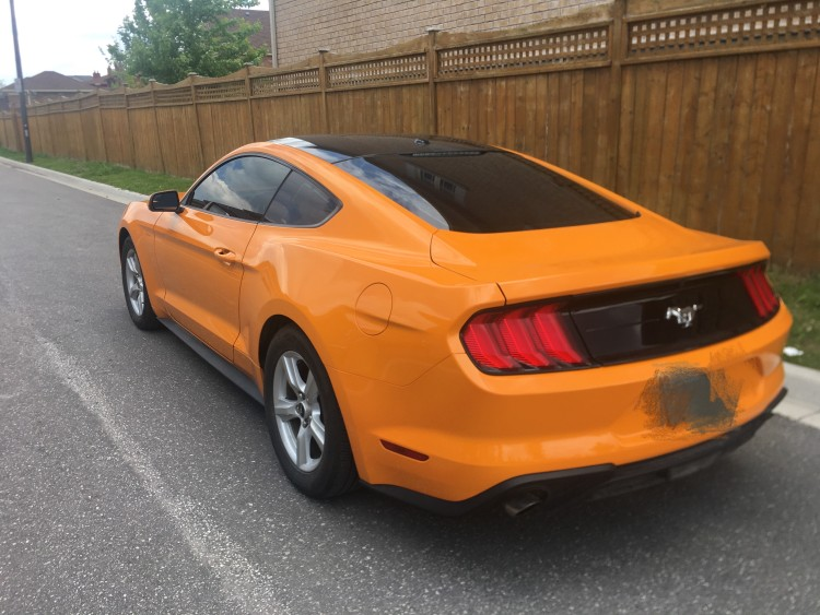 2019 Ford MUSTANG 2.3T eco full