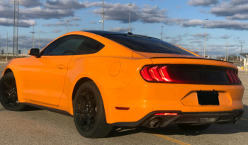 2019 Ford Mustang Ecoboost full