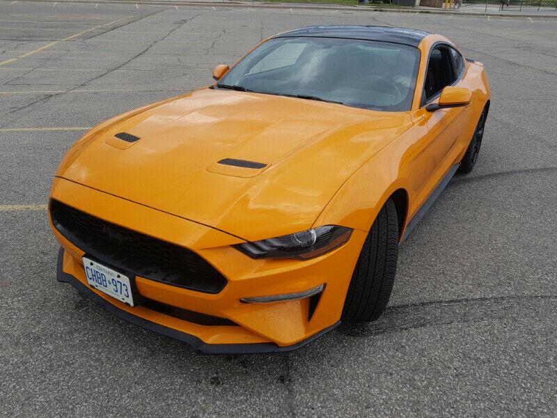 2019 Ford Mustang Ecoboost Ebony full