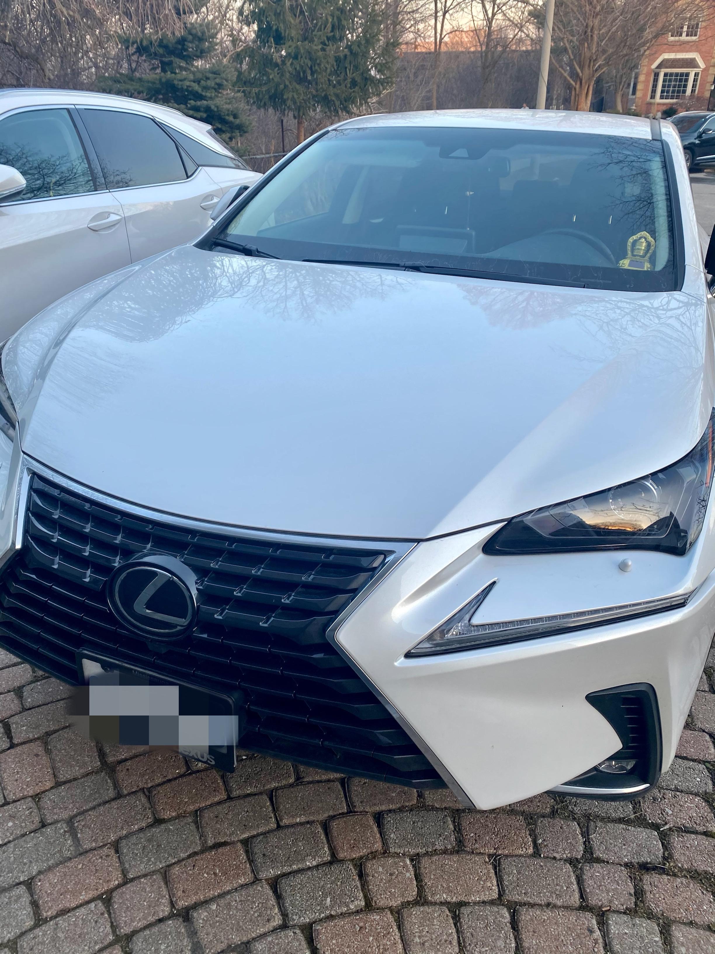 2019 Lexus NX300 full